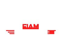 FIAM AutoParts